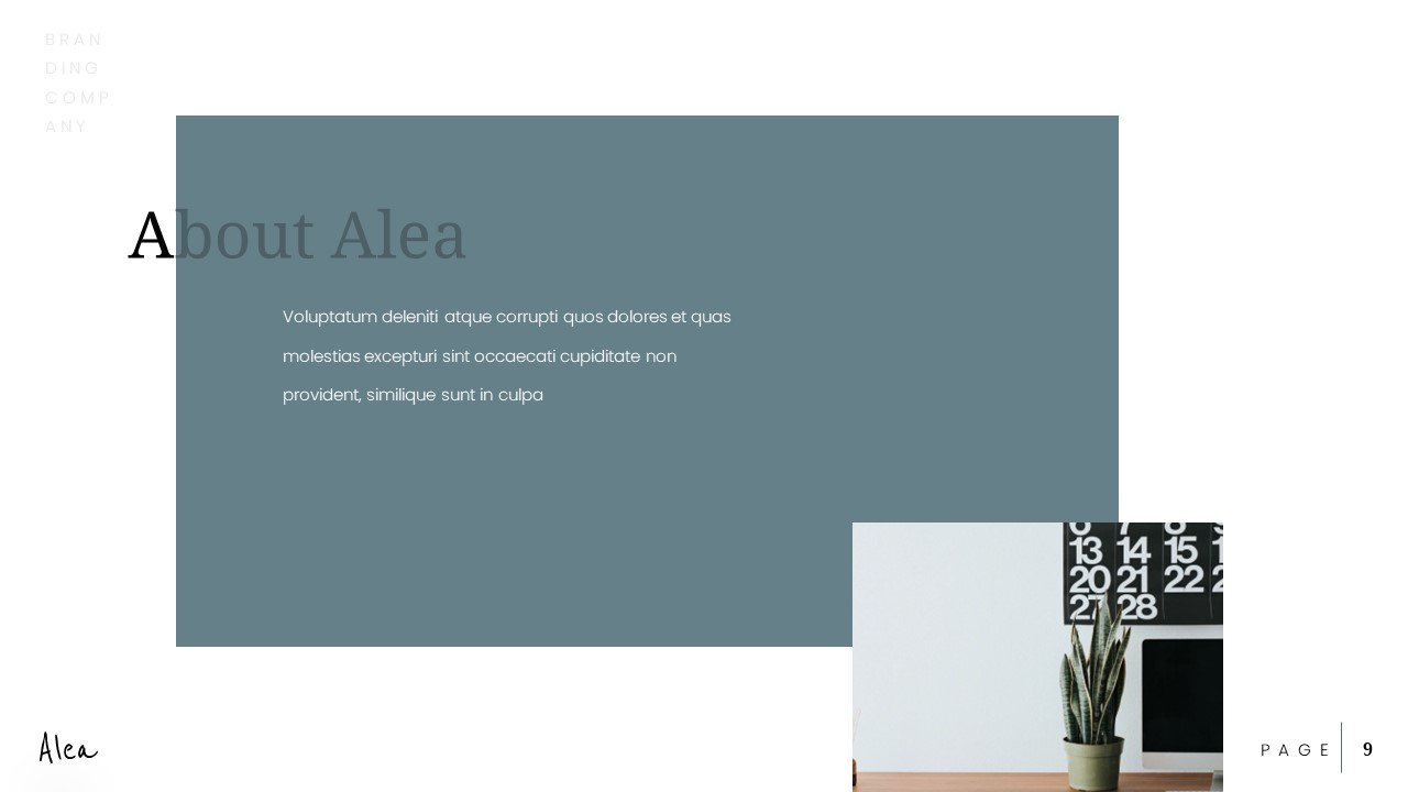 Aesthetically. beautiful slide: in pastel colors and without further ado.