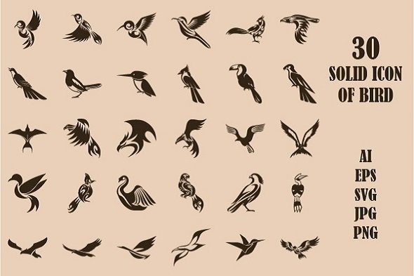 30 Solid Icon Set of Bird.