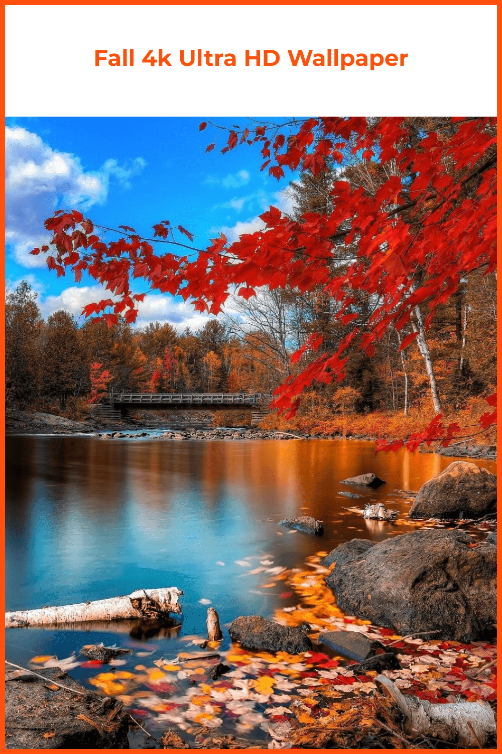 A colorful autumn spent in a small town near the lake.