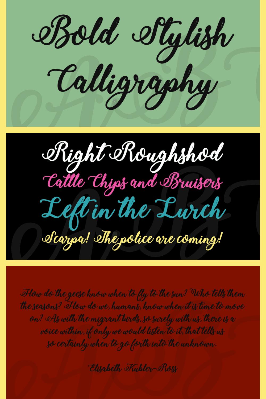 Bold stylish calligraphy font.