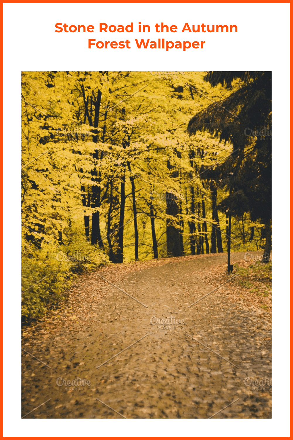 This nature stock photo is perfect for projects featuring path, woods, and landscape.