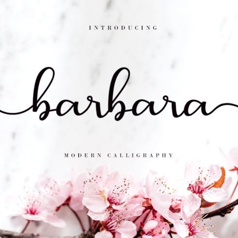 Barbara Calligraphy Script Font Preview Cover.