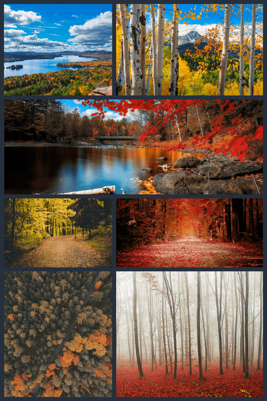 Fall Wallpapers Pinterest.