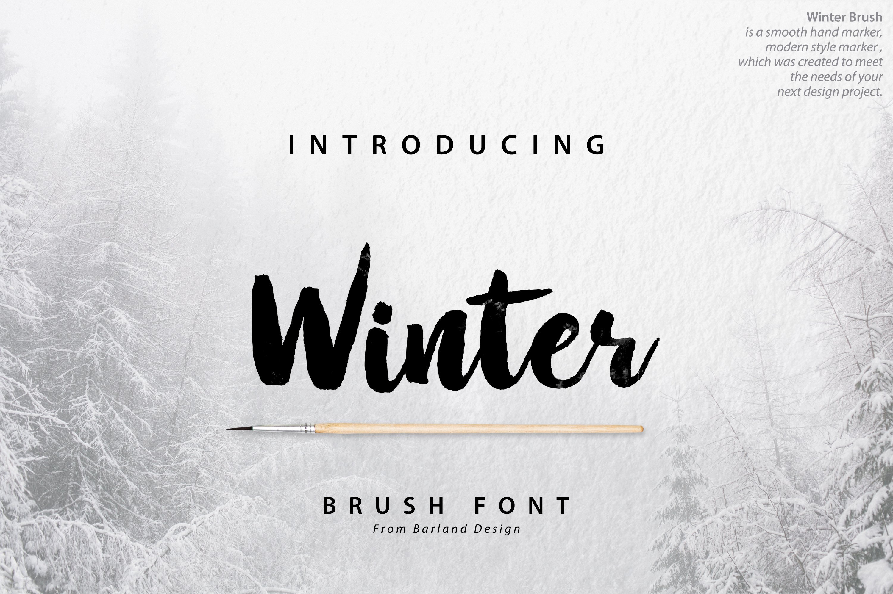 Warm font around a cold winter forest.
