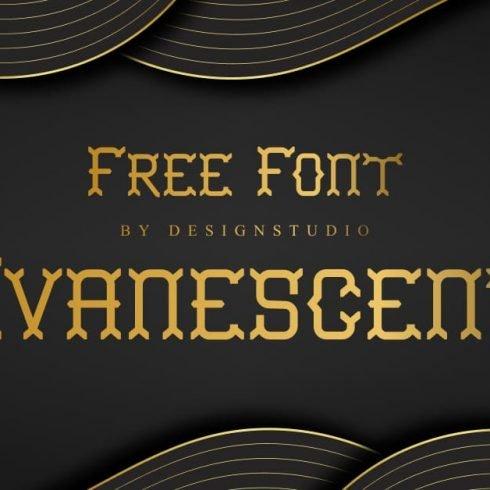Evanescent Slab Serif Font Example.