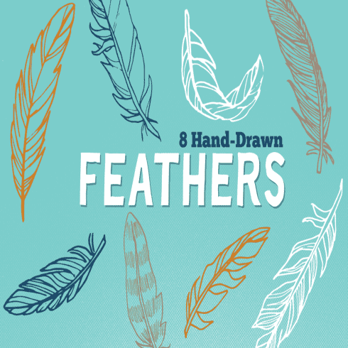 Vector Hand Drawn Feathers main cover.