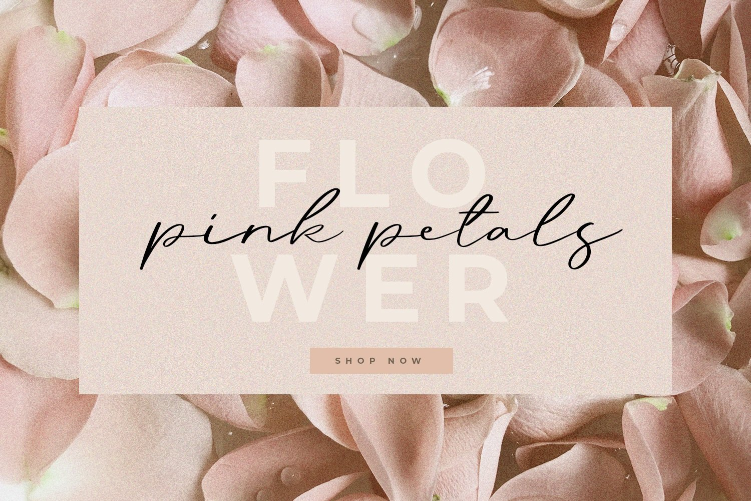 This is a very delicate illustration with peonies and romantic lettering.