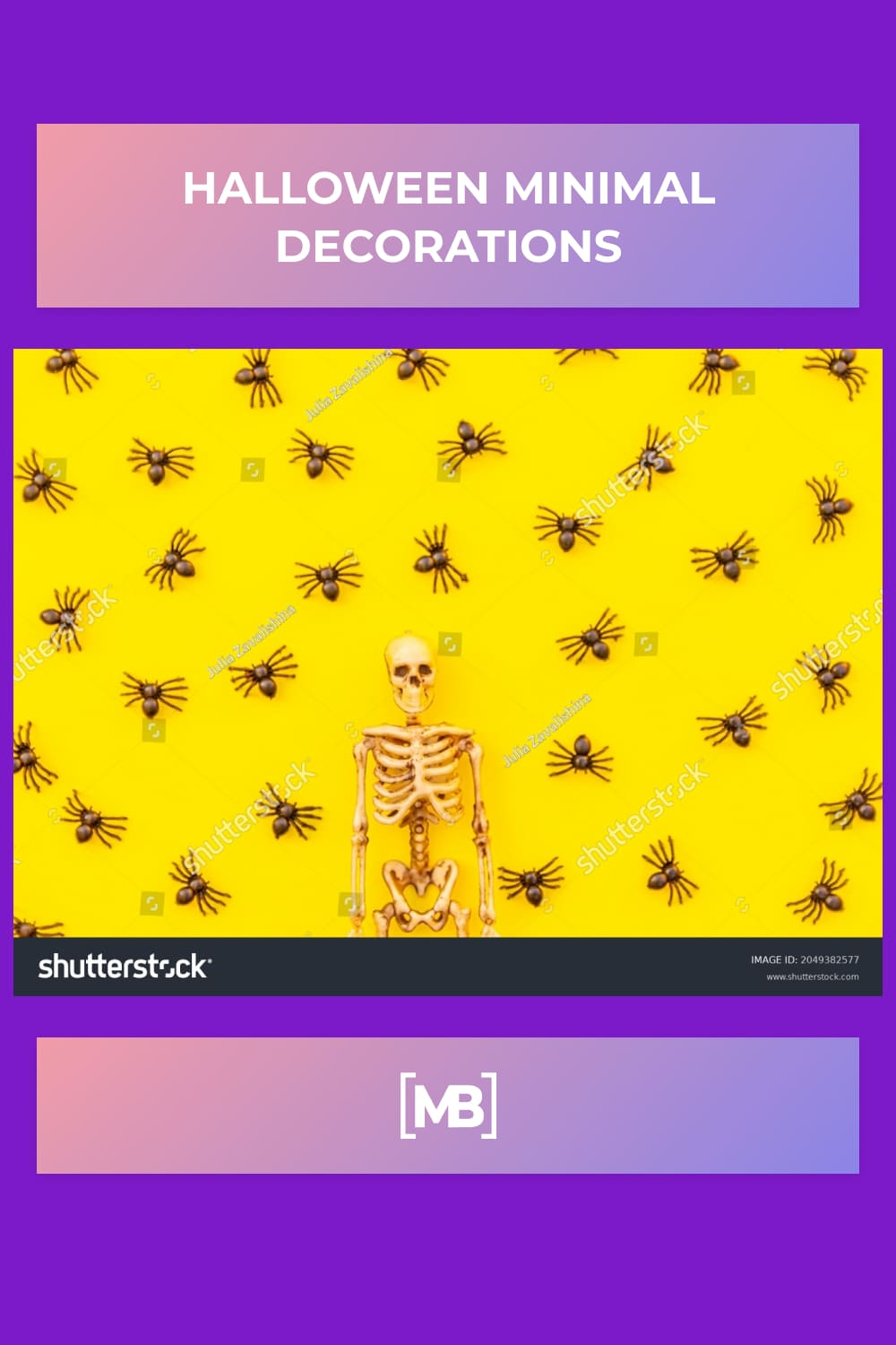 14 Halloween minimal decorations composition with many black spiders and skeleton