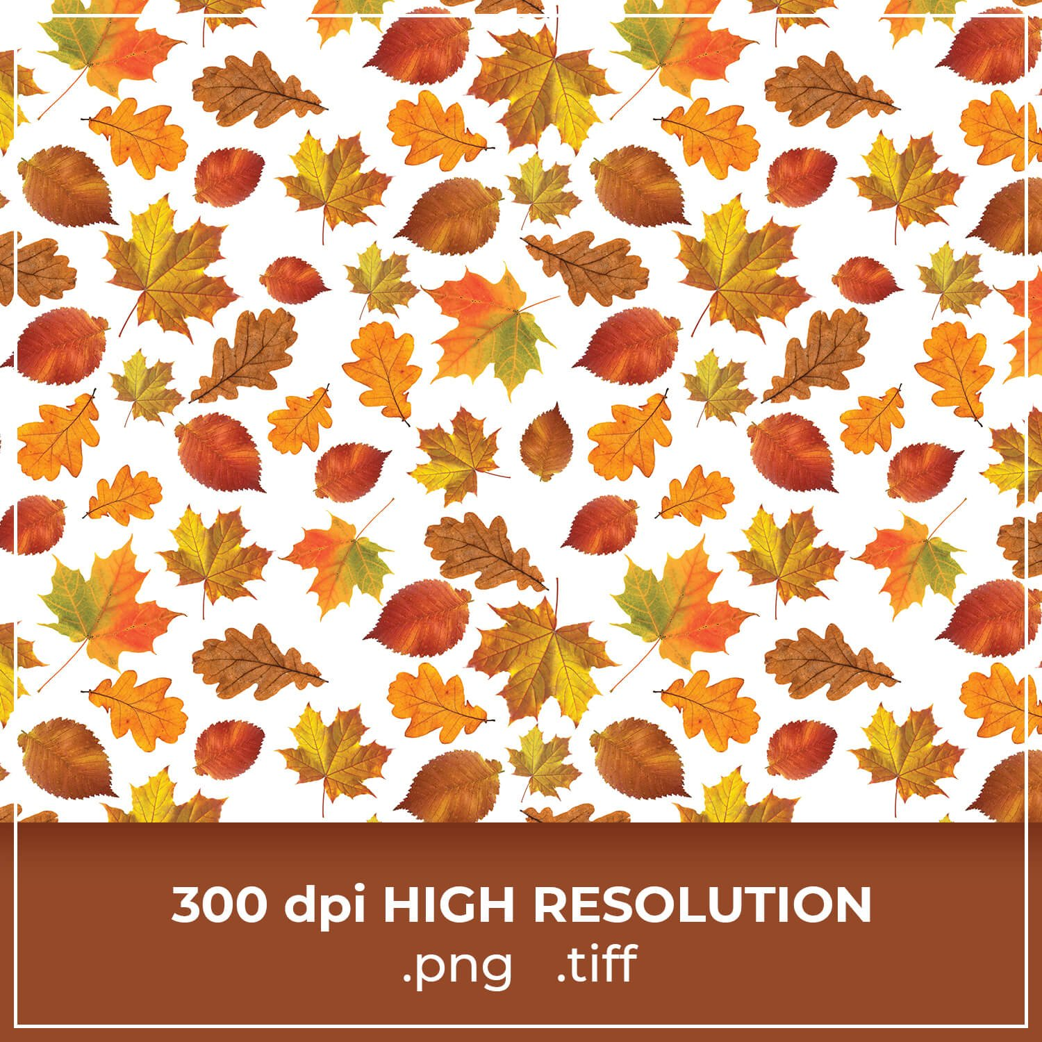 Free Autumn Leaves Pattern cover image.