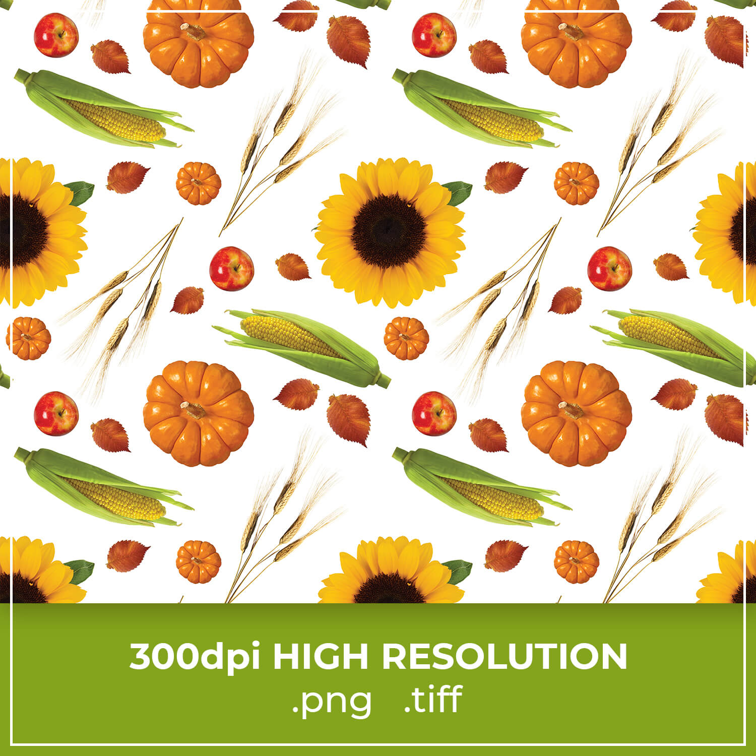 Free Corn & Sunflowers Patterns cover image.