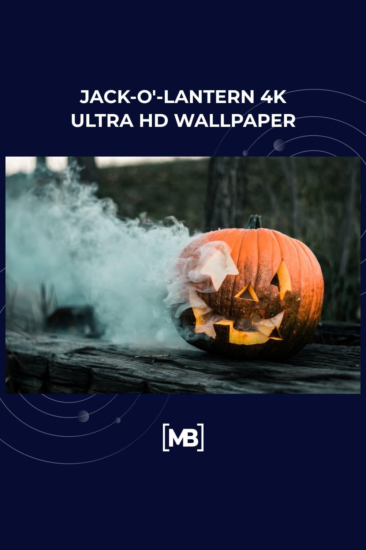7 Jack O Lantern 4k Ultra HD Wallpaper
