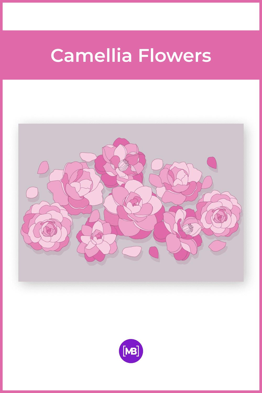 Hand-drawn camellia flowers.