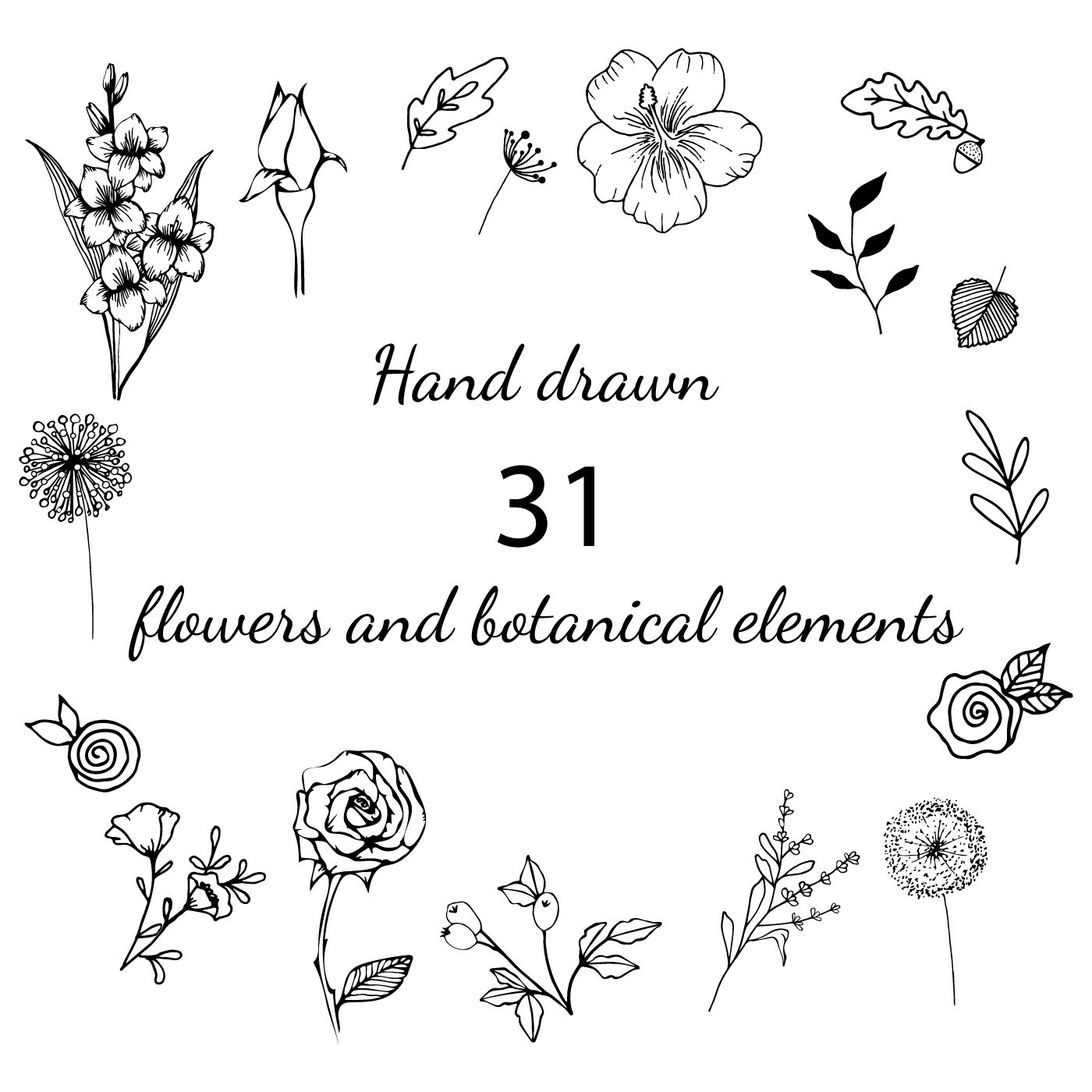 Hand Drawn Flowers and Botanical Illustrations.