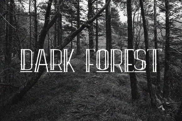 Dark forrest.