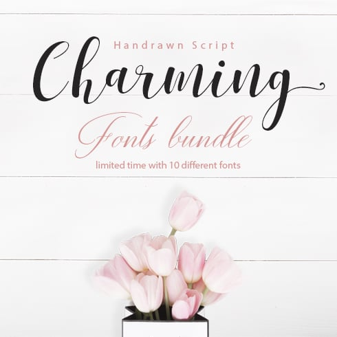 Charming Typography: 10 Hand Drawn Font Scripts - just $12 - preview 1
