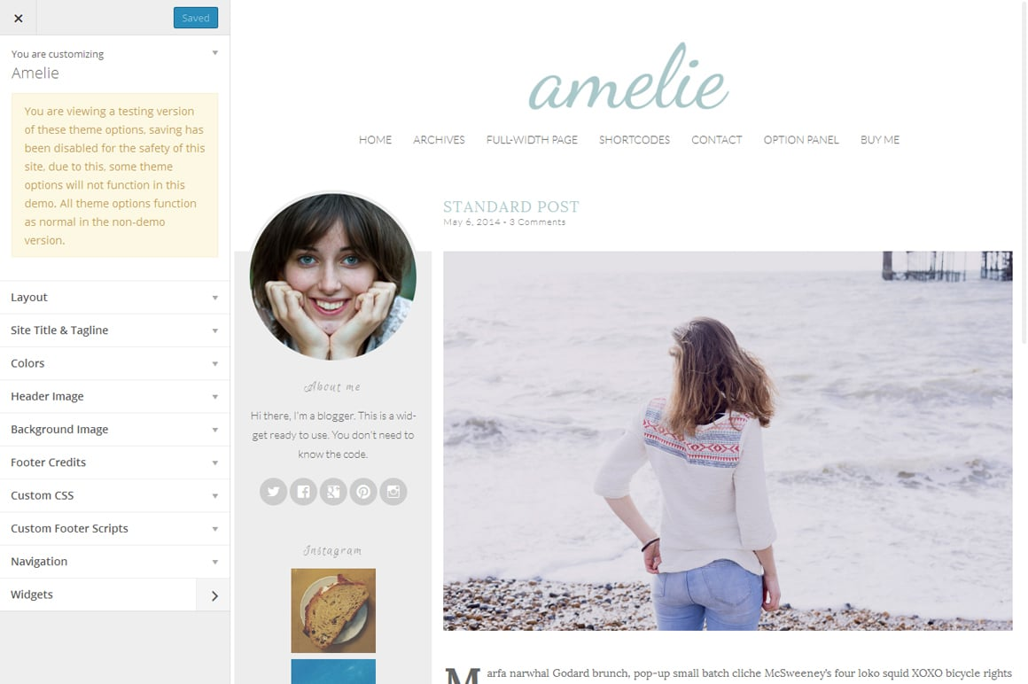 Amelie - Feminine WordPress Theme
