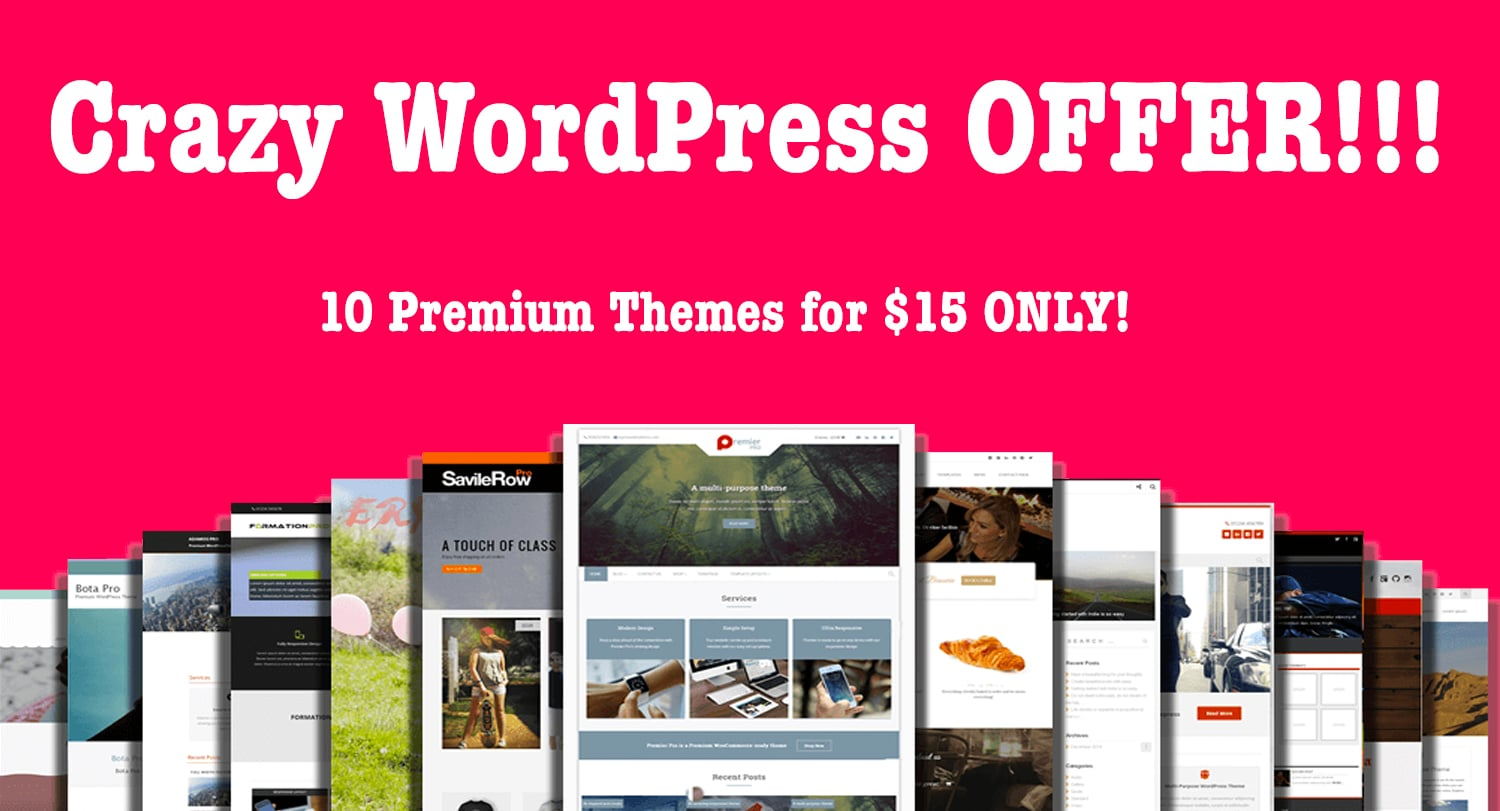 WordPress Bundle: 10 Premium Themes for $15 ONLY!