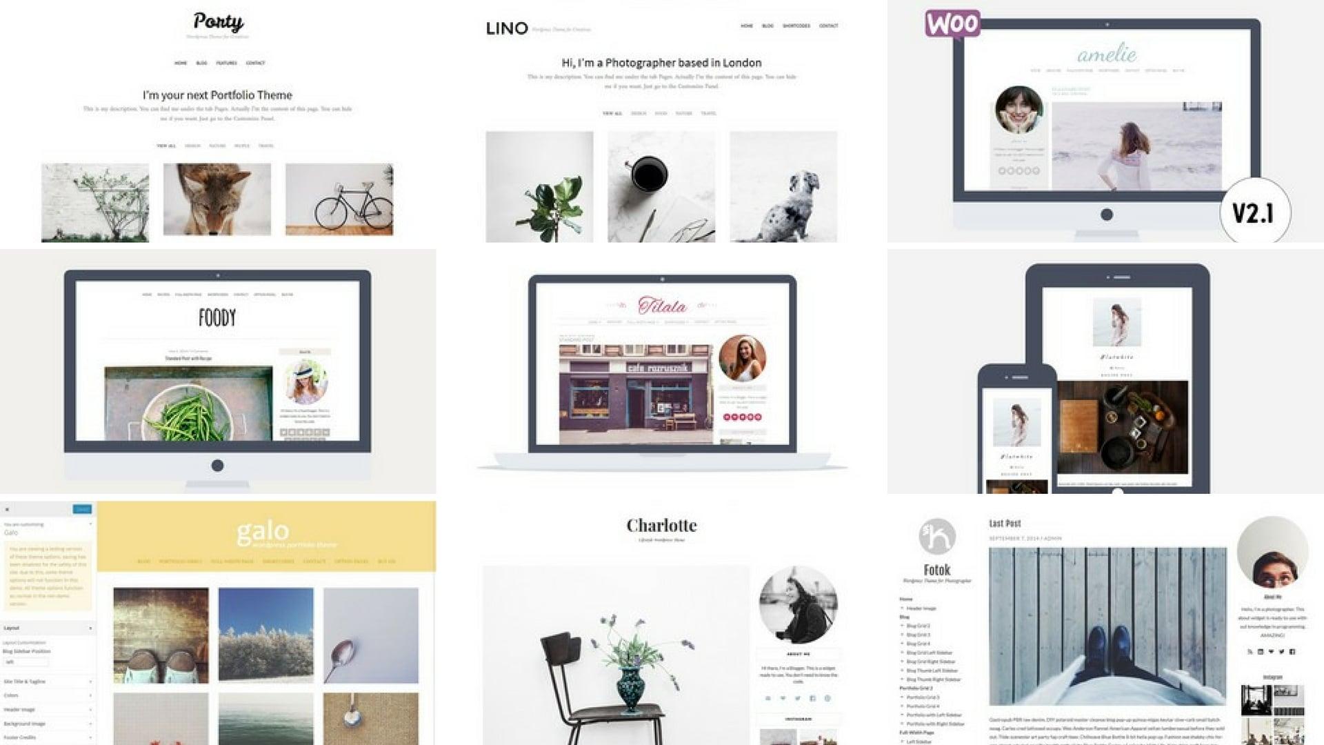 Wordpress Themes Bundle