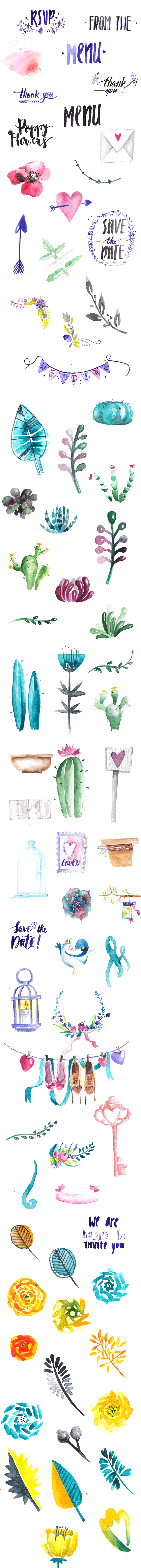 Beautiful Watercolor Collection with 540+ Elements