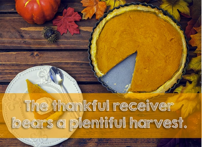 Free Thanksgiving Fonts