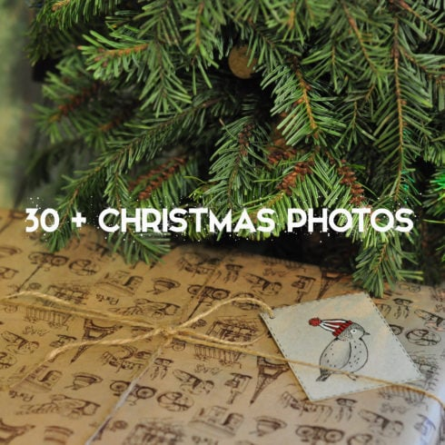 Christmas Photography: Amazing Holiday Photos - 490 8 490x490
