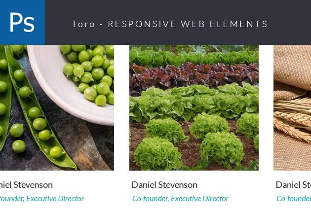 The Web Design Mega Set – Hundreds of Premium Resources for Only $19 - designtnt web modi small