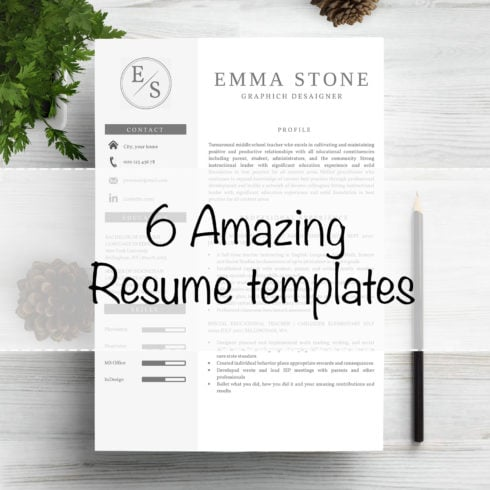 6 Work Resume CV Templates - 490 1 490x490