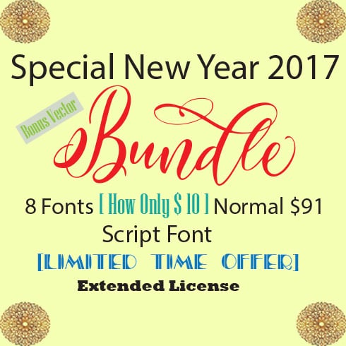 8  Professional  Fonts - only $10! - 490 3