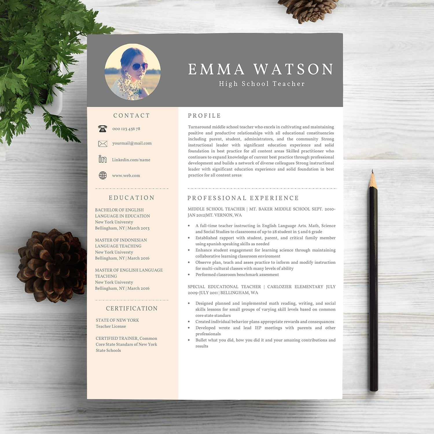 6 work resume cv templates