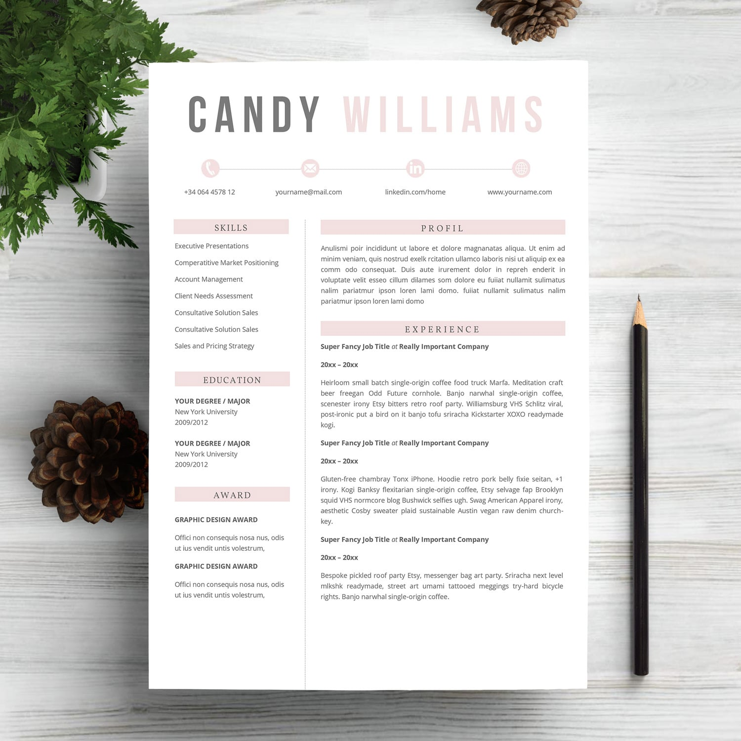 6 Best Clean Resume CV Templates in 2020 - page 1 2