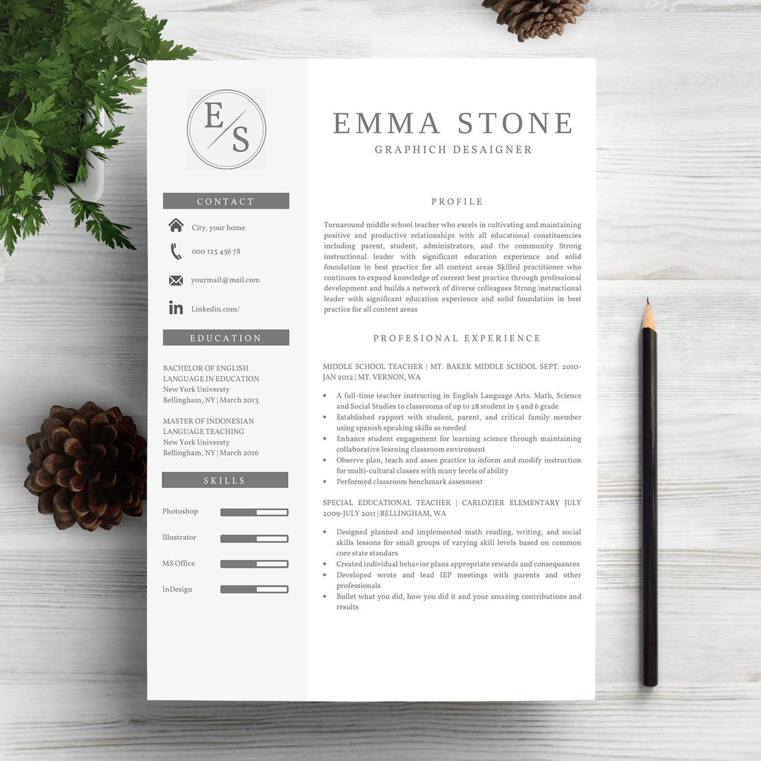 6 Professional Resume CV Templates