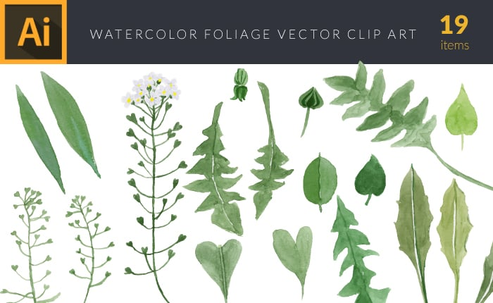 The Gorgeous Watercolor Collection with Bonus and handmade elements – only $22 - design tnt vector watercolor foliage 3 small