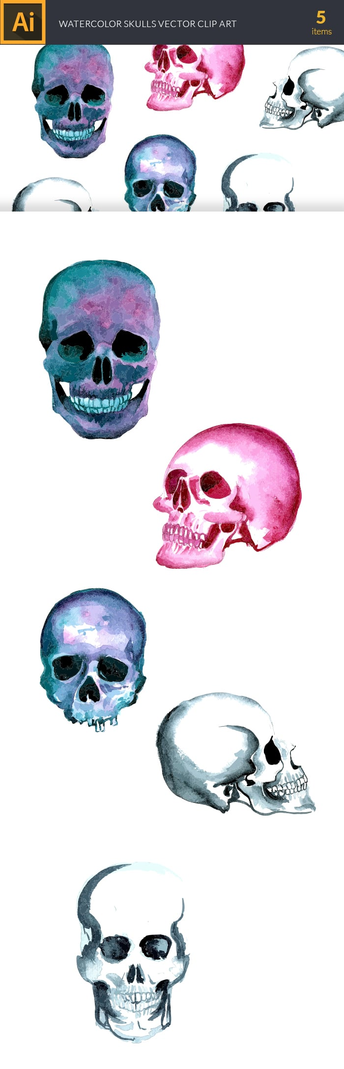 The Gorgeous Watercolor Collection with Bonus and handmade elements – only $22 - design tnt vector watercolor skulls large