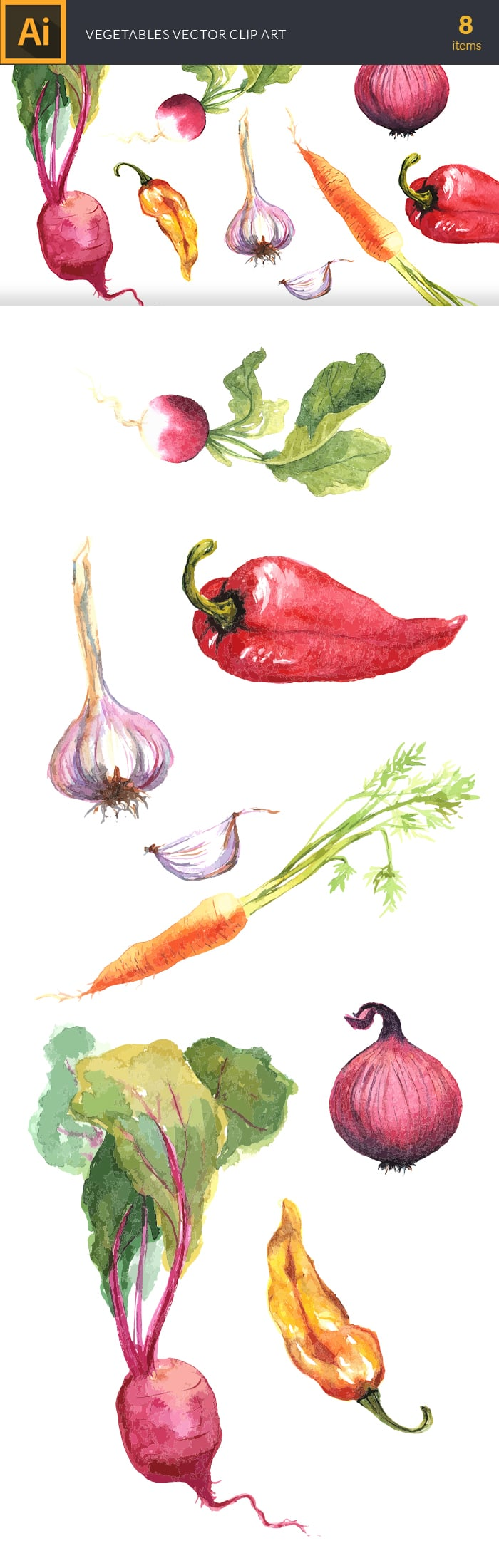The Gorgeous Watercolor Collection with Bonus and handmade elements – only $22 - design tnt vector watercolor vegetables large