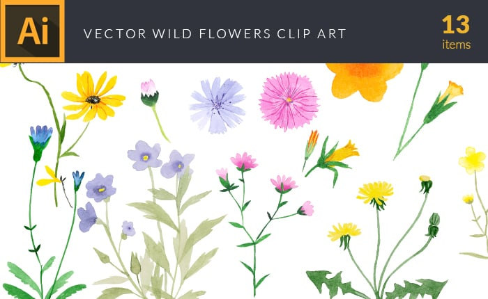 The Gorgeous Watercolor Collection with Bonus and handmade elements – only $22 - design tnt vector watercolor wild flowers small