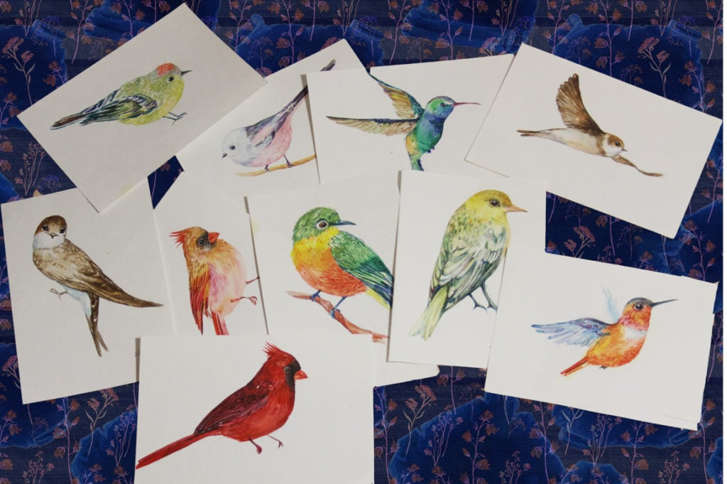 Collection of Watercolor Birds - 002 1024x681