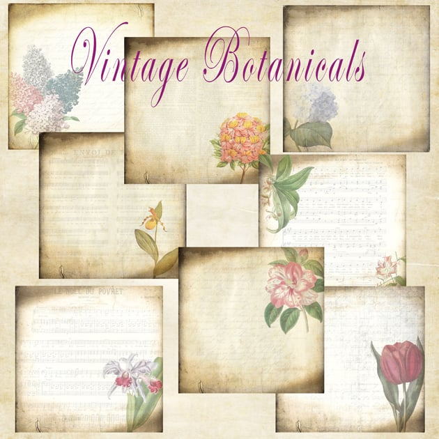 The Ultimate Creative Bundle - Vintage Botanicals Main Preview