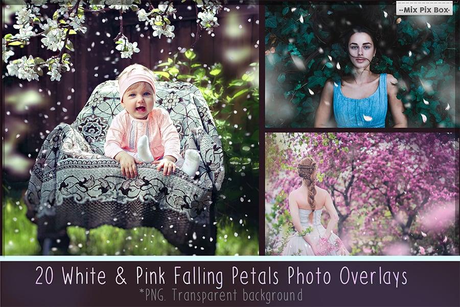800+ Photo Overlays PNG Bundle - 1 8