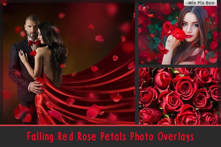 800+ Photo Overlays PNG Bundle - 1 9
