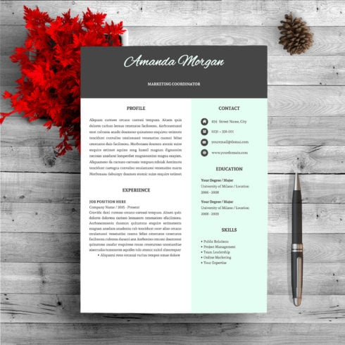 Professional Resume Template - $9 - page 1 1 490x490