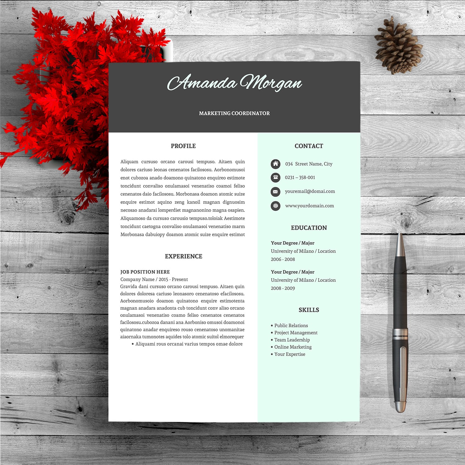 Professional Resume Template - $9 - Master Bundles