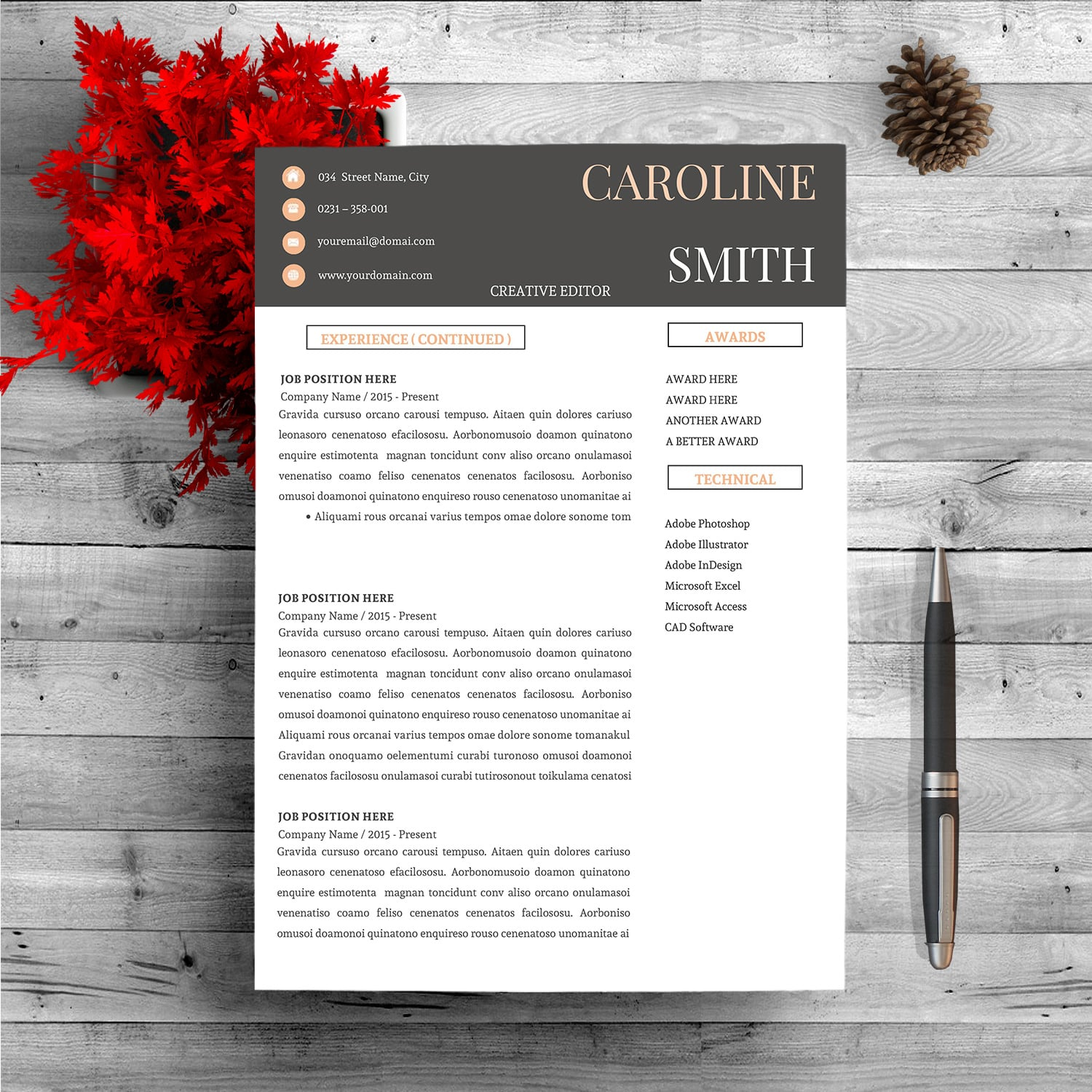Super Bundle 12 Best Selling Resume Template - page 2
