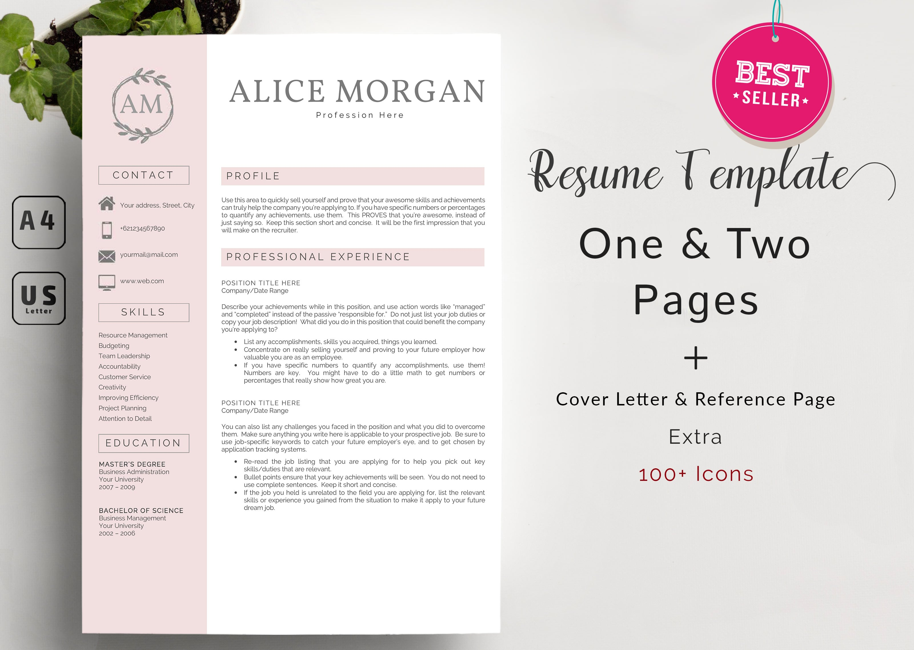 Super Bundle 12 Best Selling Resume Template - tampilan awal