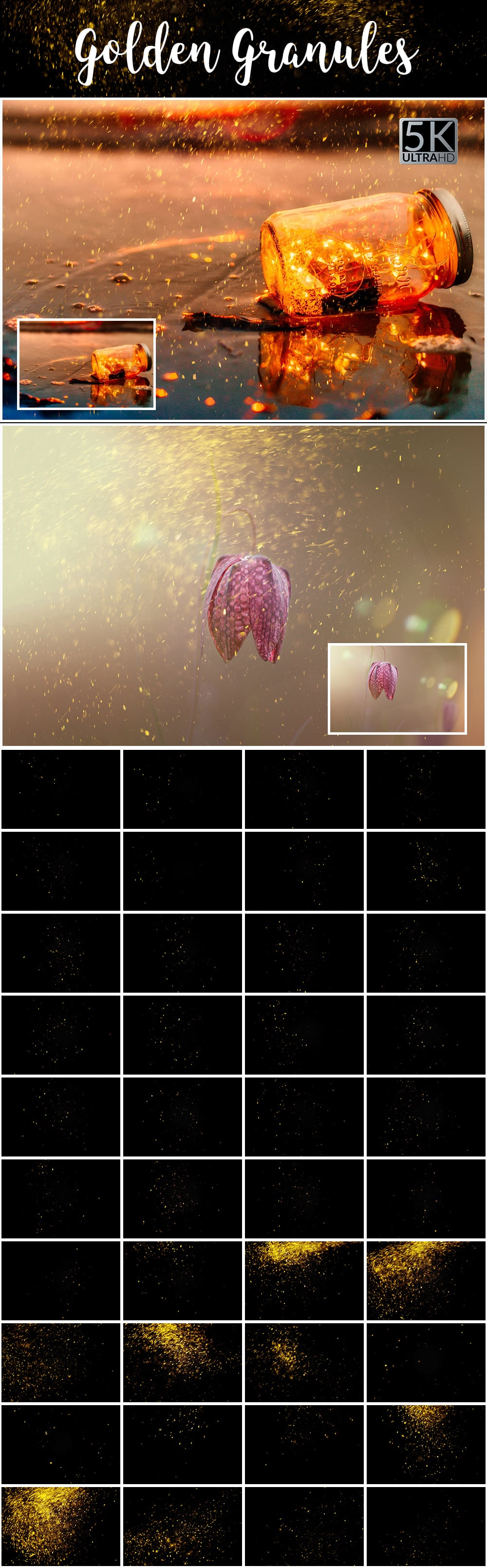 1100 Photoshop Overlays Mega Pack - Extended License - 18 Golden Granules