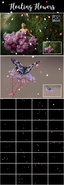 1100 Photoshop Overlays Mega Pack - Extended License - 31 Floating Flowers