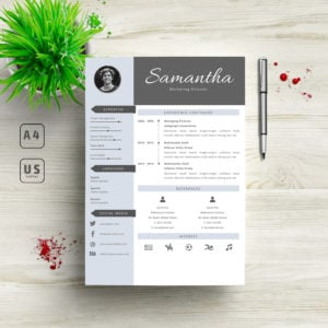 3 in 1 Professional Resume Template - 4 300x300