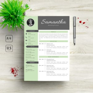 3 in 1 Professional Resume Template - 5 300x300