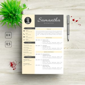 3 in 1 Professional Resume Template - 6 300x300