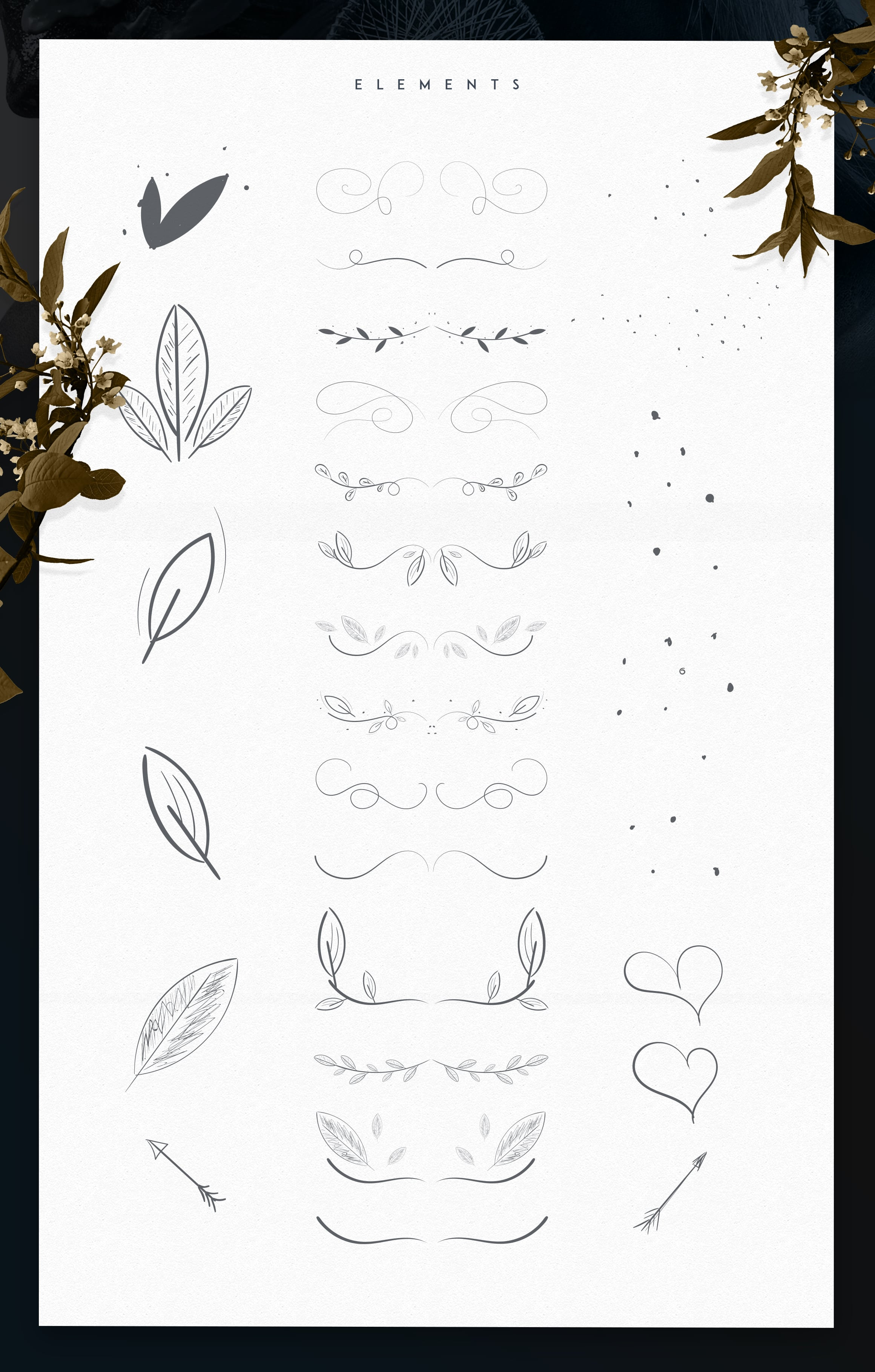 Emanuela Typeface and Designs
