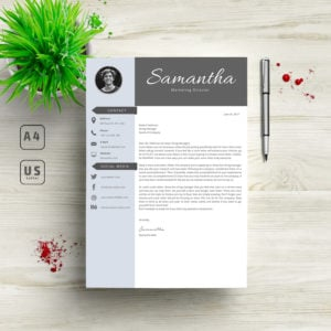 3 in 1 Professional Resume Template - 8 300x300